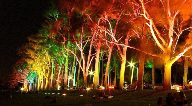 Illuminazione degli alberi anche senza il pollice luminoso!