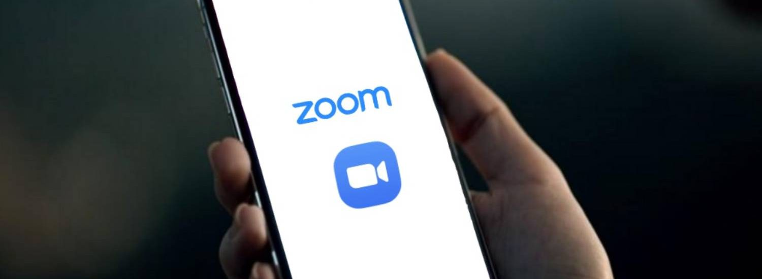 La guida su Zoom di Idealight