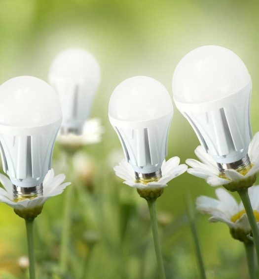 lampadine-led-fiori